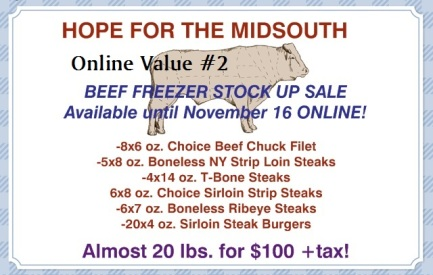 nov14 freezer beef v2